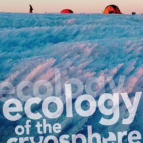 PhD position in glacial biogeochemistry (pozycja dla doktoranta w projekcie o bioegochemiiglacjalnej)